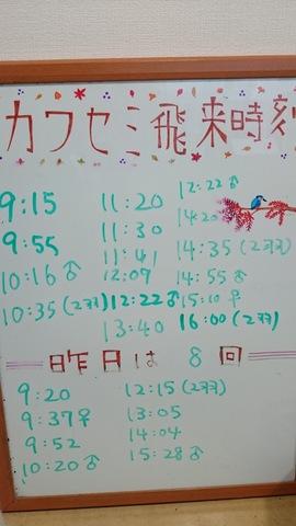11 - 1.jpg