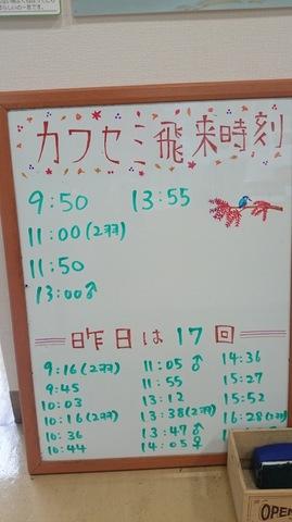 25 - 1.jpg