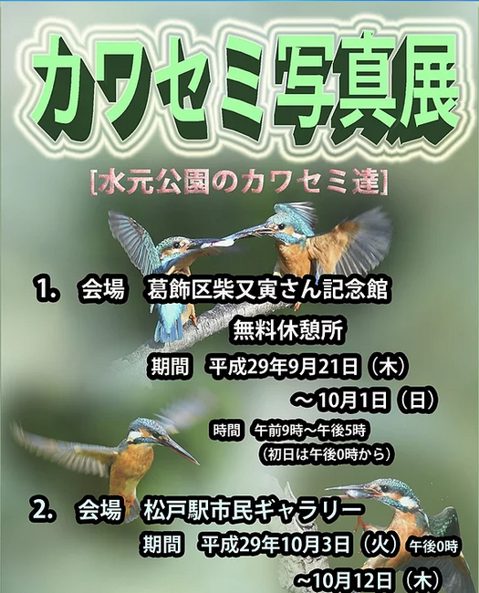 かわせみ倶楽部ポスター.png