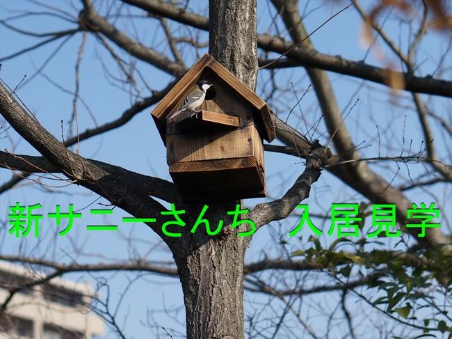 新サニーさんち入居見学55_R.jpg