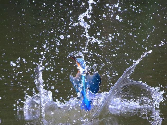 水しぶき10_R.jpg