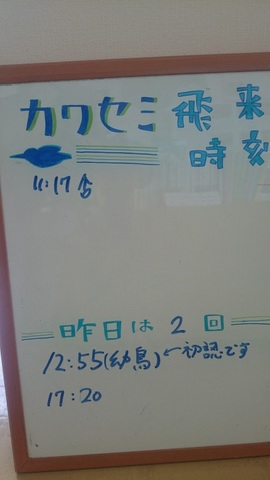 01 - 1.jpg