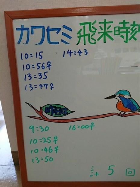 DSC_0236_R.JPG
