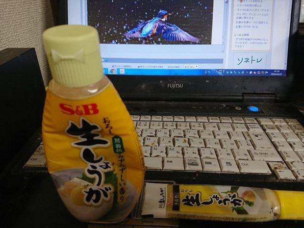 DSC_0293_R.JPG